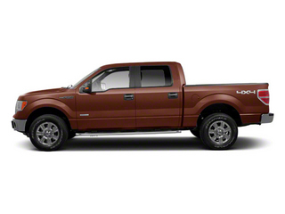 Golden Bronze Metallic 2011 Ford F-150 Pictures F-150 SuperCrew King Ranch 2WD photos side view