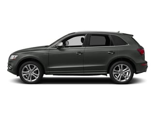 Daytona Gray Pearl Effect 2015 Audi SQ5 Pictures SQ5 Utility 4D Prestige AWD V6 photos side view