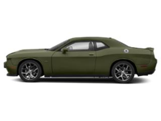 F8 Green 2019 Dodge Challenger Pictures Challenger R/T RWD photos side view