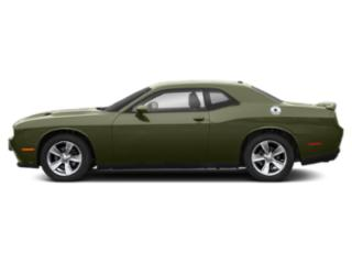 F8 Green 2019 Dodge Challenger Pictures Challenger SXT RWD photos side view