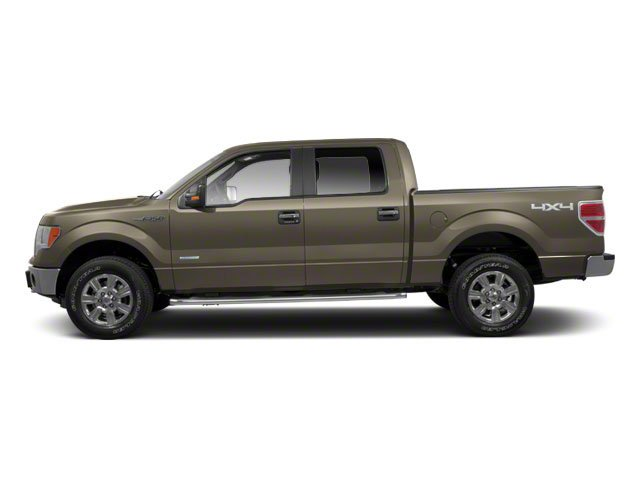 Pueblo Gold Metallic 2010 Ford F-150 Pictures F-150 SuperCrew XLT 4WD photos side view