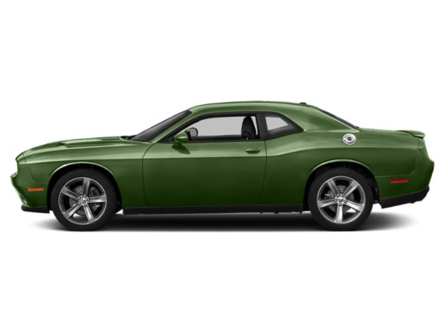 F8 Green 2018 Dodge Challenger Pictures Challenger SXT RWD photos side view