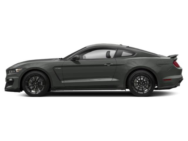 Magnetic Metallic 2018 Ford Mustang Pictures Mustang Shelby GT350 Fastback photos side view