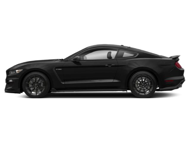 Lead Foot Gray 2018 Ford Mustang Pictures Mustang Shelby GT350 Fastback photos side view