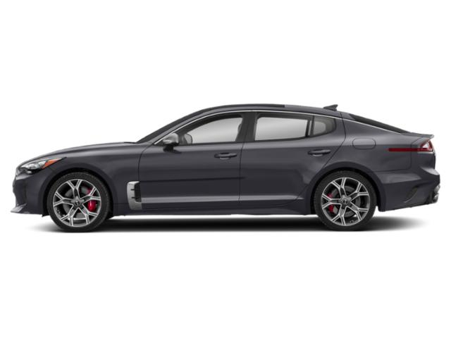 Panthera Metal 2018 Kia Stinger Pictures Stinger GT RWD photos side view