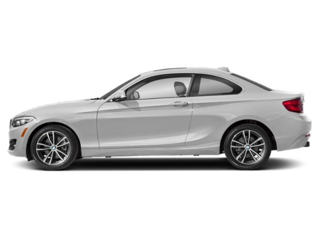 Mineral White Metallic 2019 BMW 2 Series Pictures 2 Series 230i Coupe photos side view