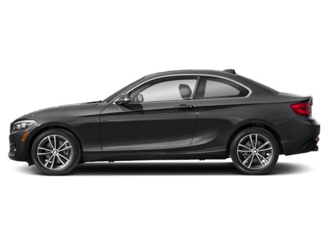 Mineral Grey Metallic 2019 BMW 2 Series Pictures 2 Series 230i Coupe photos side view