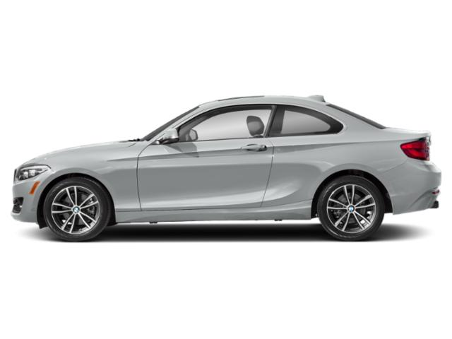 Glacier Silver Metallic 2019 BMW 2 Series Pictures 2 Series 230i Coupe photos side view
