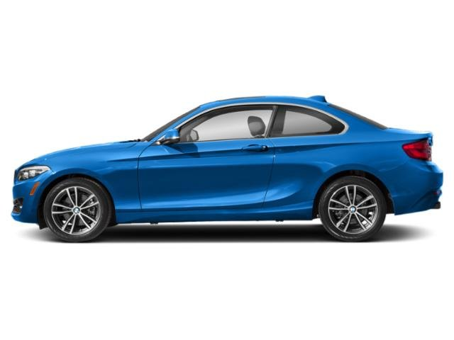 Seaside Blue Metallic 2019 BMW 2 Series Pictures 2 Series 230i Coupe photos side view