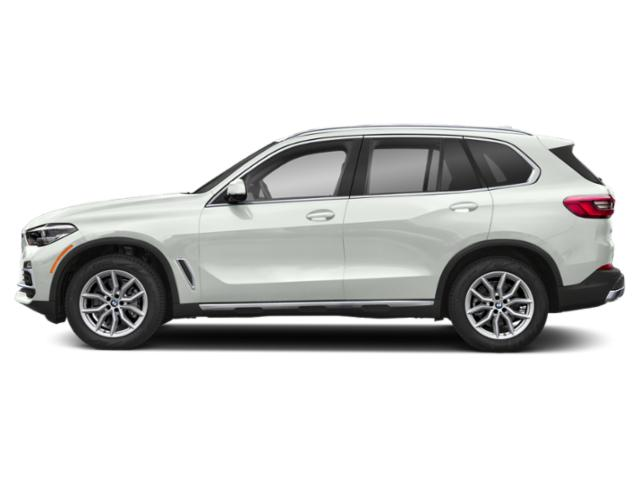 Alpine White 2019 BMW X5 Pictures X5 xDrive40i Sports Activity Vehicle photos side view