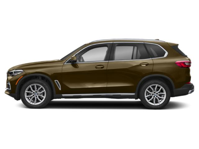 Pyrite Brown Metallic 2019 BMW X5 Pictures X5 xDrive40i Sports Activity Vehicle photos side view