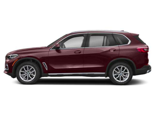 Ametrin Metallic 2019 BMW X5 Pictures X5 xDrive40i Sports Activity Vehicle photos side view