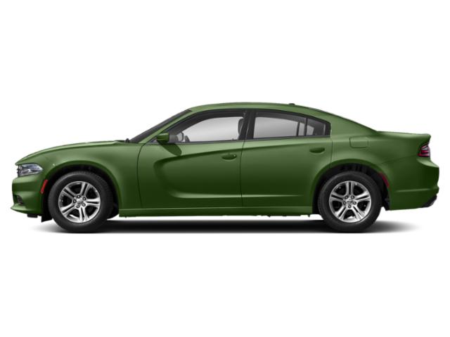 F8 Green 2019 Dodge Charger Pictures Charger SXT AWD photos side view
