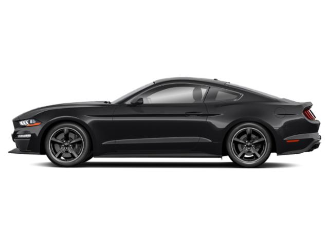 Shadow Black 2019 Ford Mustang Pictures Mustang EcoBoost Convertible photos side view
