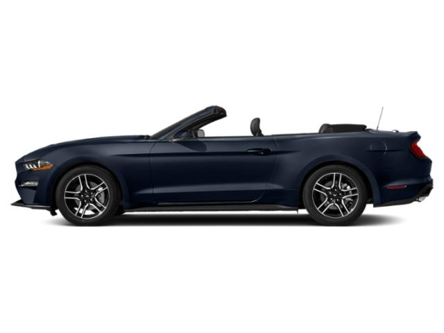 Kona Blue Metallic 2019 Ford Mustang Pictures Mustang EcoBoost Convertible photos side view