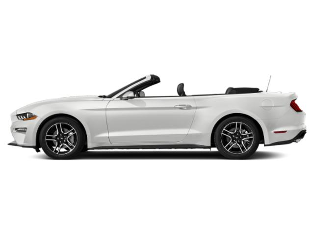 Oxford White 2019 Ford Mustang Pictures Mustang EcoBoost Convertible photos side view