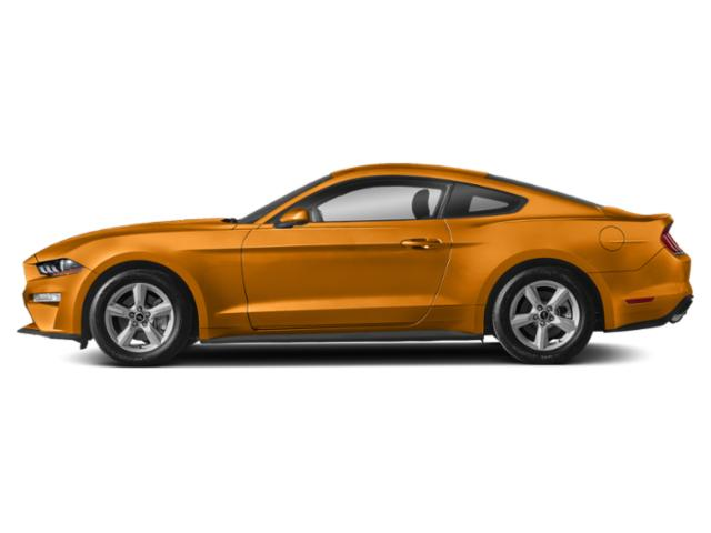 Orange Fury Metallic Tri-Coat 2019 Ford Mustang Pictures Mustang GT Fastback photos side view