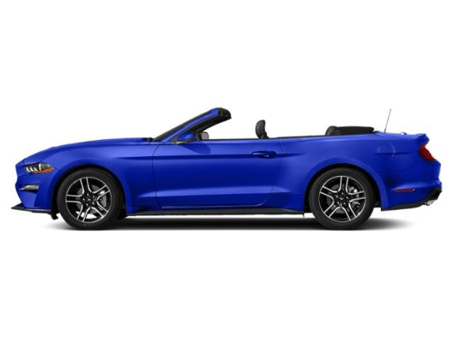 Velocity Blue Metallic 2019 Ford Mustang Pictures Mustang EcoBoost Convertible photos side view