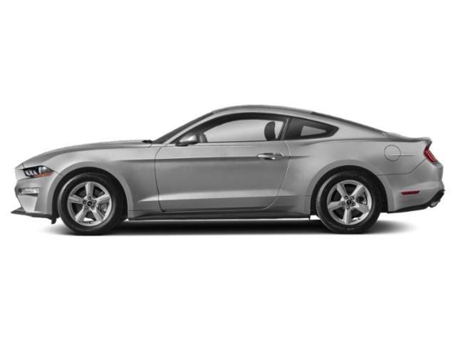 Ingot Silver Metallic 2019 Ford Mustang Pictures Mustang EcoBoost Fastback photos side view