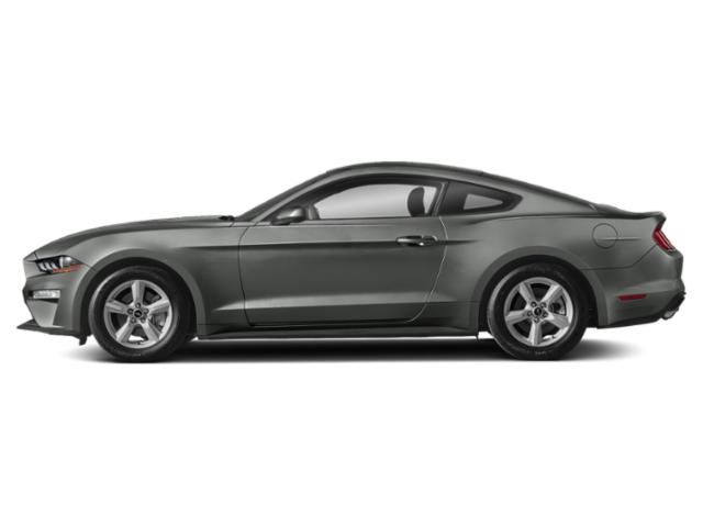Magnetic Metallic 2019 Ford Mustang Pictures Mustang EcoBoost Fastback photos side view