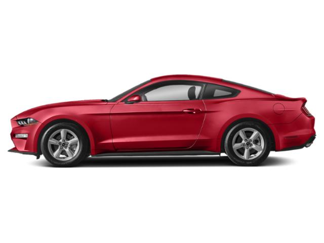Race Red 2019 Ford Mustang Pictures Mustang EcoBoost Fastback photos side view