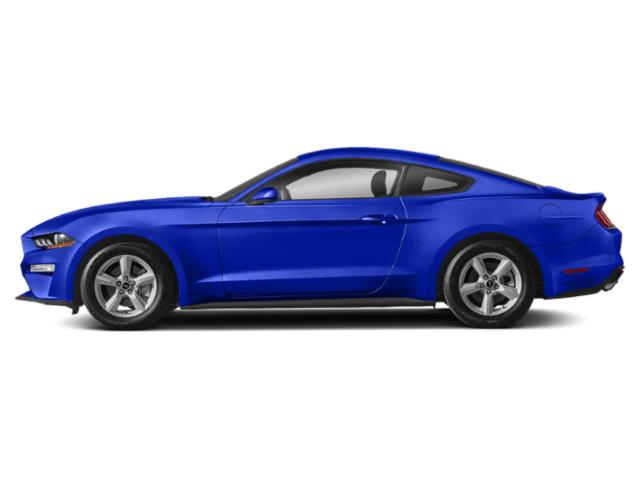 Velocity Blue Metallic 2019 Ford Mustang Pictures Mustang EcoBoost Fastback photos side view