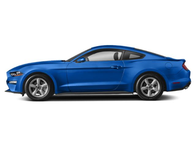 Velocity Blue Metallic 2019 Ford Mustang Pictures Mustang GT Fastback photos side view