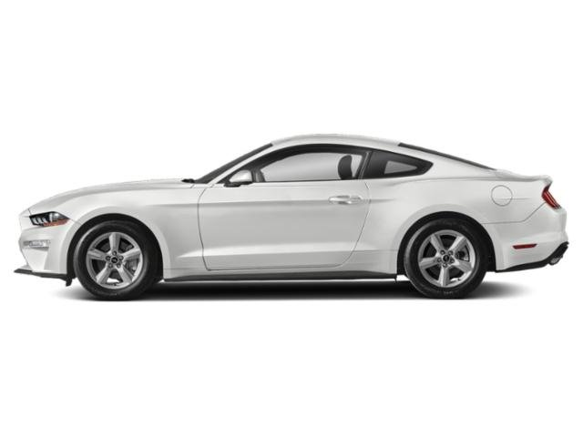 Oxford White 2019 Ford Mustang Pictures Mustang EcoBoost Fastback photos side view