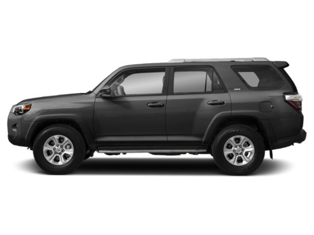 Magnetic Gray Metallic 2019 Toyota 4Runner Pictures 4Runner SR5 2WD photos side view