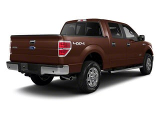 Golden Bronze Metallic 2011 Ford F-150 Pictures F-150 SuperCrew King Ranch 2WD photos rear view