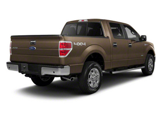Pale Adobe Metallic 2011 Ford F-150 Pictures F-150 SuperCrew XLT 2WD photos rear view