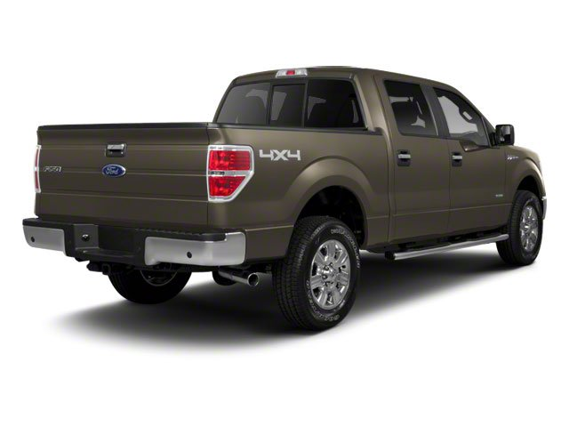 Pueblo Gold Metallic 2010 Ford F-150 Pictures F-150 SuperCrew XLT 4WD photos rear view