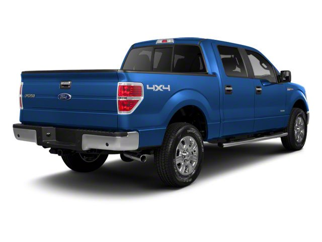 Blue Flame Metallic 2010 Ford F-150 Pictures F-150 SuperCrew XLT 4WD photos rear view