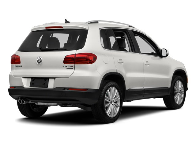 Candy White 2013 Volkswagen Tiguan Pictures Tiguan Utility 4D SEL 2WD I4 Turbo photos rear view