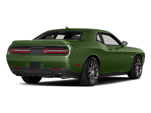 F8 Green 2018 Dodge Challenger Pictures Challenger R/T Shaker RWD photos rear view