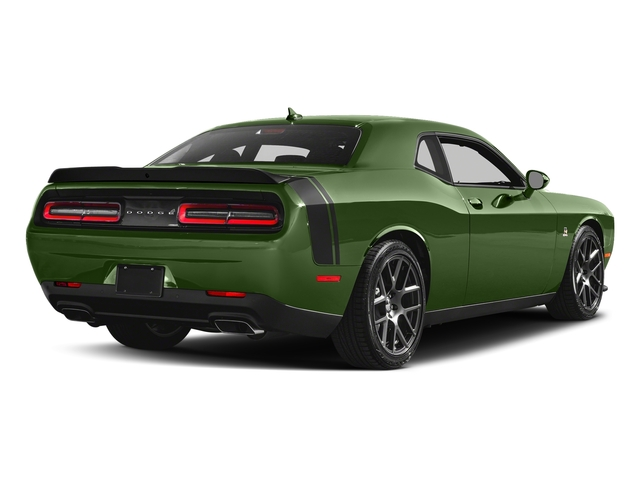 F8 Green 2018 Dodge Challenger Pictures Challenger R/T Scat Pack RWD photos rear view