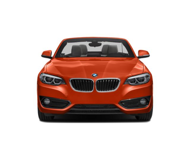 2019 BMW 2 Series Pictures 2 Series 230i Coupe photos front view