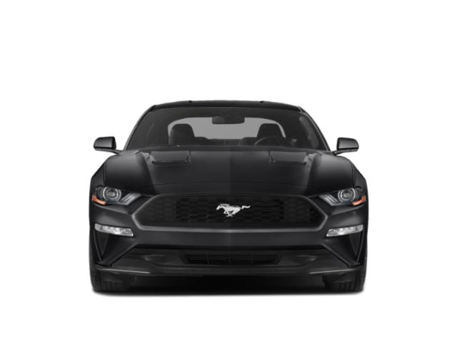 2019 Ford Mustang Pictures Mustang EcoBoost Fastback photos front view