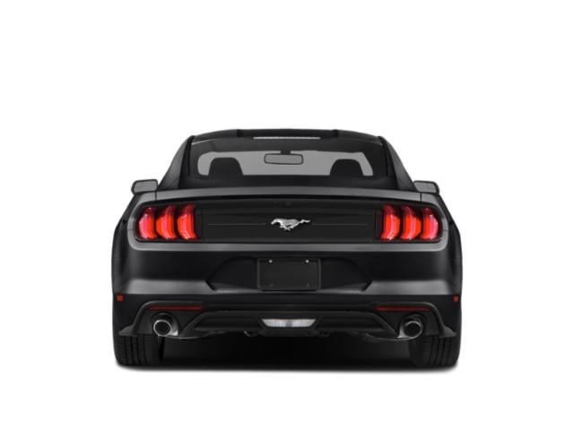 2019 Ford Mustang Pictures Mustang EcoBoost Fastback photos rear view