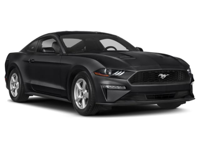 2019 Ford Mustang Pictures Mustang EcoBoost Fastback photos side front view