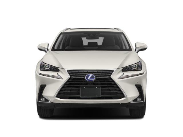 2019 Lexus NX Pictures NX NX 300h AWD photos front view