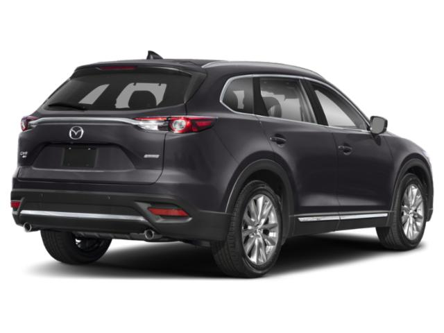 2019 Mazda CX-9 Pictures CX-9 Touring AWD photos side rear view