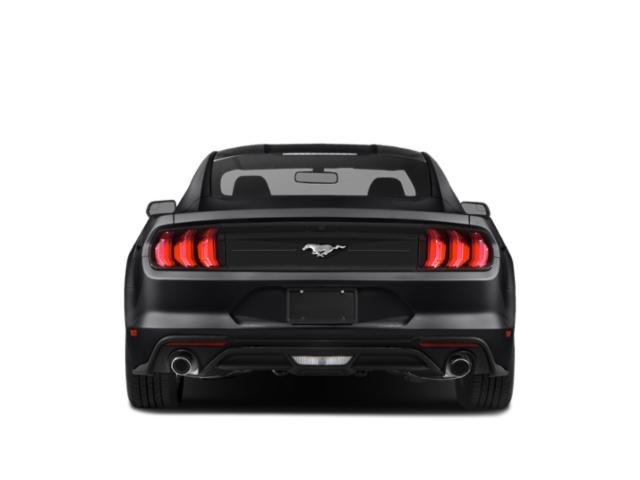 2020 Ford Mustang Base Price GT Fastback Pricing rear view